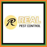 Real Pest.png